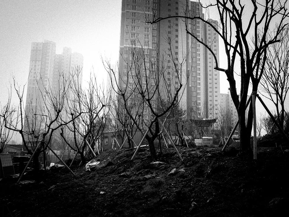Suwon, South Korea. Ricoh GRD3.