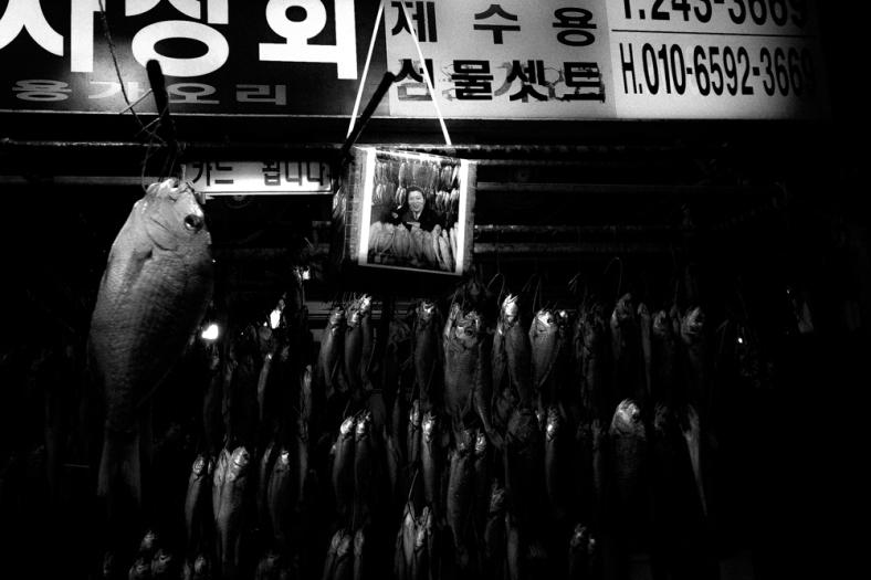 Busan, South Korea.