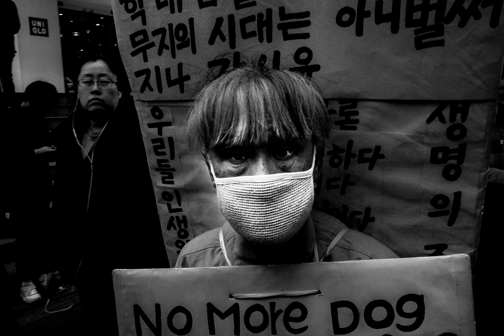 South Korea. March 2015.